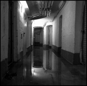 Hochwasserschaden von der Steuer absetzen – 5 Steuertipps für Flutopfer